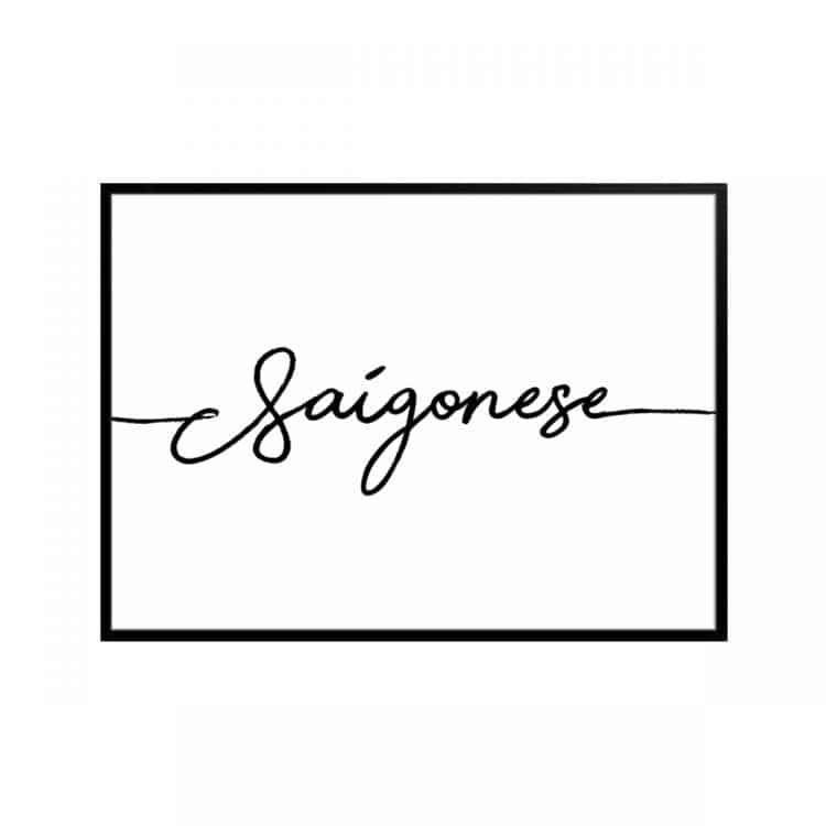 """TRANH CHỮ """"SAIGONESE"""" (33)-0"""